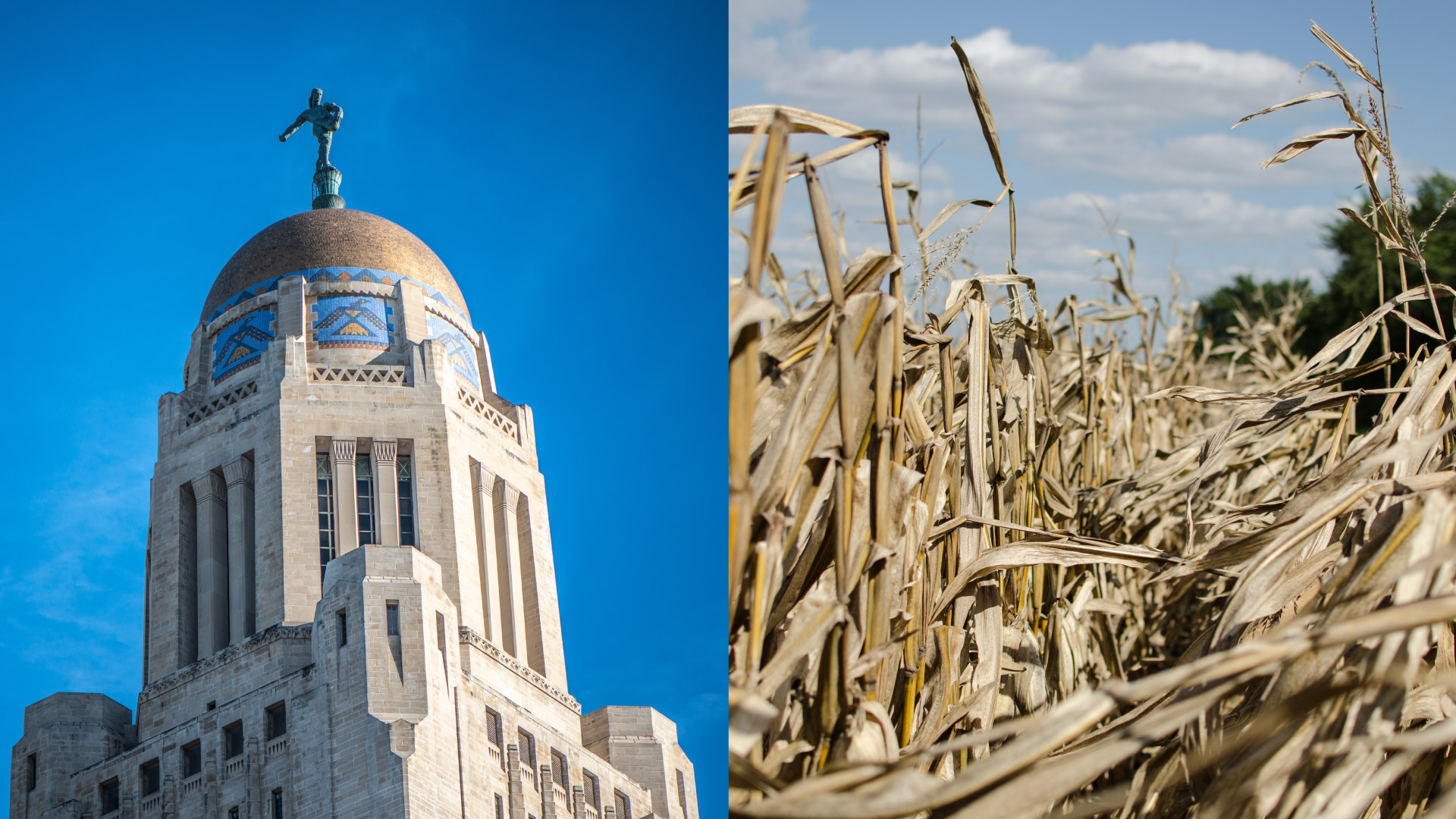 Lincoln Capitol and Cornfield for Theobald Campaign Agency 877