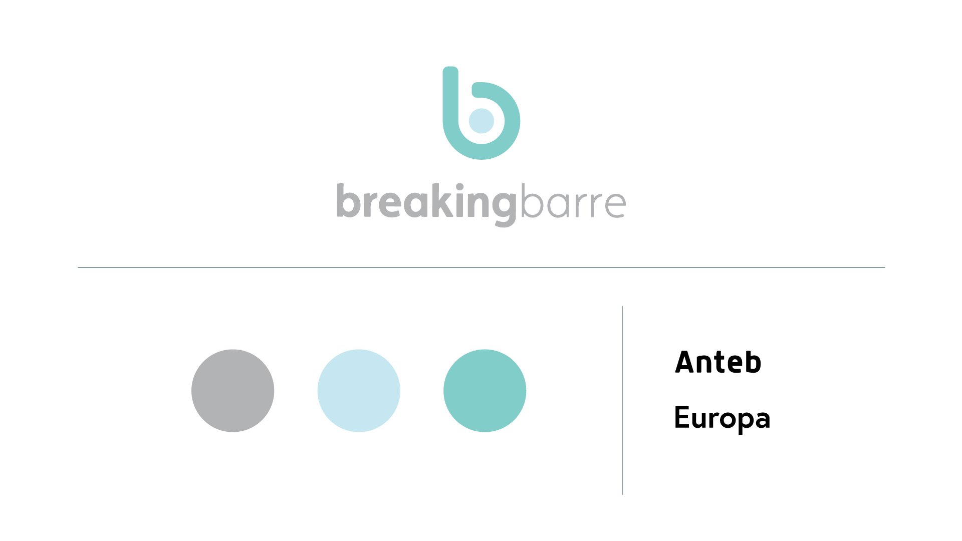 Colors and logo for Breaking Barre's new branding by 877